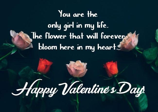 Happy Valentine's Day Wishes for Girlfriend