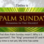 Happy Palm Sunday Messages, Quotes and Wishes 2021 with Images Pictures Photos HD Wallpapers Free Download